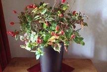 Stukjes van mij Herfst . / Zelf gemaakt uit eigen tuin .