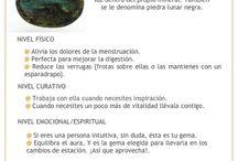Minerales / Descripciones de minerales y usos.