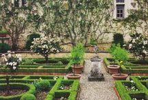 Gardens / by Mel Robbins
