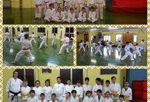 Gruppi di allenamento