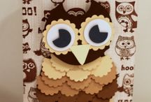 Owls/birds !