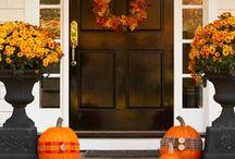 Holidays: Halloween / by Emmy M
