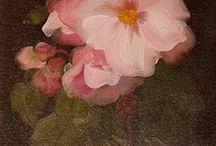 Rose pink and brown
