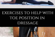 Equestrian Fitness / Equestrian Fitness.  Horseback rider fitness.  Ways to get in shape and improve your ability to horseback ride.
