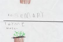 Illustrate plants and food