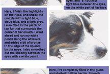 Animal fur/hair