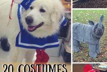 A Thrifty Halloween