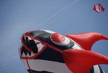 kites / kites
