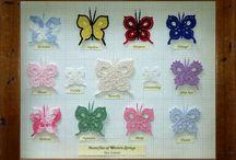 Butterfly Love!