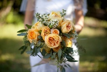 wedding in the trees  / by Atlas Party Rental