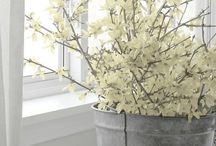 Spring is in the air! / Spring is just around the corner. Here at Symphony Homes, we couldn't be more excited to be one day closer to the community pools opening up, gardening to begin and new home owners to move into their dream homes! Here are some amazing spring tips, decor ideas and things just to make you smile! Enjoy!
