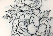 Pieonies Flowers