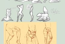 Human Anatomy Drawing