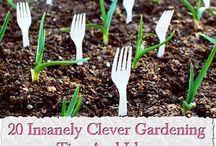 gardeningz