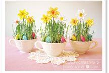 Saison Printemps / Paques Printemps Spring
