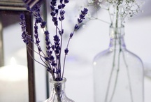 Floral Temptations