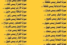 معاني  كلمات بالعربيه