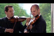 austrianviennesetraditionalmusic