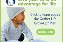 Insurance / Insurance Free Quote Health Life Auto Home Dental Accident http://www.planetgoldilocks.com/insurance.htm