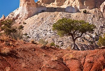 ghost ranch nm