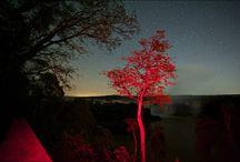 Cataratas de Iguaçu / Fotografia noturna