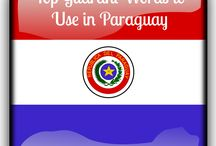 Paraguay / Saving pins for a trip to my birth country