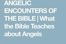 Bible Bits