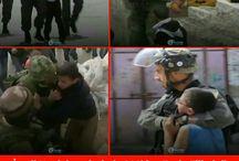 Filistin/Palästina