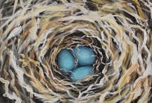 Inspiration - Birds and Nests / Love the chaos of the birds nest….great painting projects!