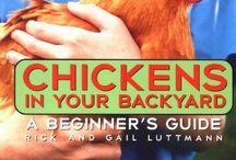 Chicken Checkout