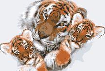 Tiger tapestries