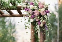 Wedding - Filagória