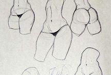 Anatómia rajz