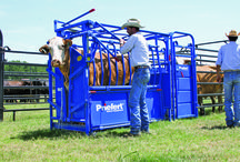 Cattle Equipment  / Priefert offers a full line of cattle equipment suitable for any herd size.