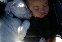 PUPPIES and BABIES!! / by Lynn Baker