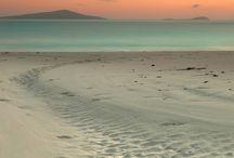 """beach.Traumstrände / Ich lade euch ein, dieser Pinwand zu folgen. Kennt Ihr Strandbilder, bei denen ihr euch denkt: """"Da will ich hin""""?  Wenn ihr selbst eure schönsten #Traumstrände hier pinnen möchtet, dann bitte einfach per Post Bescheid geben oder E-Mail an dawillichhin@gmx.at"""