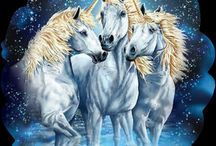 Unicorns & magical beings
