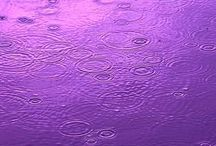 Purple Day 26th March 2015 / Purple Day for Epilepsy