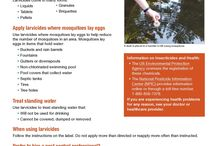 Mosquito Control / Infographics about what you need to know about controlling mosquitoes.