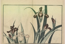 Hokusai / by GallicaBnF