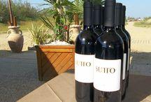 Wine Days at the Green Beach bar / Wine days at the Green Beach Bar #marinadivenezia