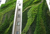 Architectural Greens