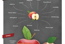 Wine n' Aromas / These are the main aromas in infographics format detailing how aromas define  grapes and wines