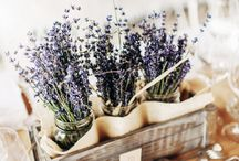 Wedding Ideas / Some ideas, everything is not totally clear in my head. I would like a lavender theme but don't want too have much purple.. Dance floor pictures are from Jake :)