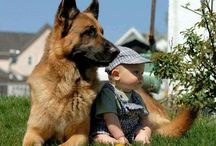 Pet's lovers