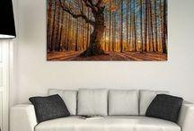 Nature - Art - Photography