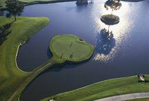 Top Public Courses: Florida
