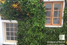 Jardín Vertical Cruz Roja Las Palmas / Sobre una fachada interior de la zona de reuniones del personal del edificio de la Cruz Roja de Las Palmas, generosamente iluminado por un patio de luces,  se desarrolla este jardín vertical, desarrollado en torno a los diferentes huecos que pueblan la fachada.
