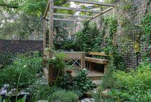 Garden_thin