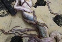 Deniz kızları okyanus vsre